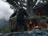 10 imágenes de Dawn of the Planet of the Apes